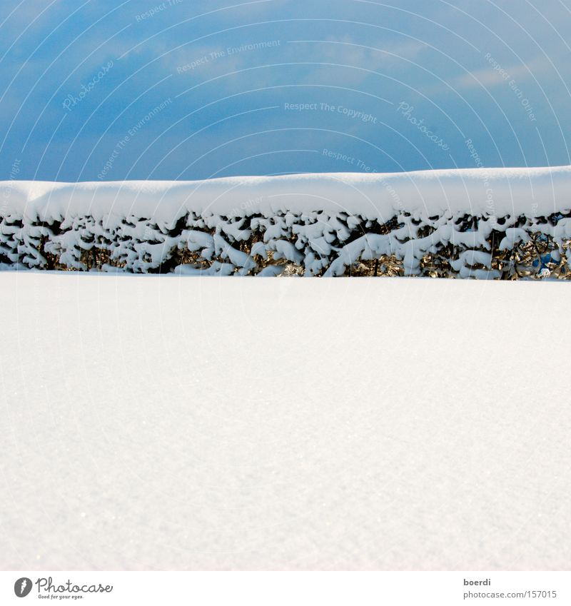 bLue on white Sky Snow Fence Border Blue White Cold Bright Winter Divide Deep snow Close-up Line Hedge Beautiful