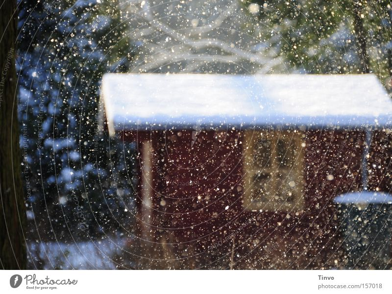 Calm Winter Window Snowfall Roof Romance Peace Hut Snowscape Fairy tale Shallow Enchanting Peaceful Trickle Jinxed Wooden hut