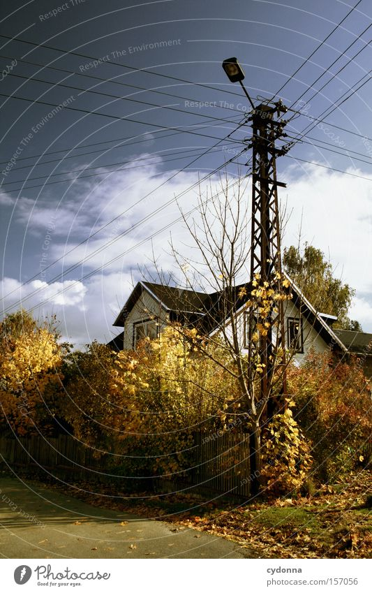 autumn day Autumn Leaf Sky House (Residential Structure) Electricity pylon East Landscape Idyll Seasons Tree Transience Living or residing Beautiful Esthetic