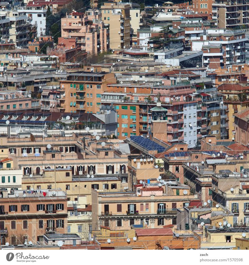 100 lives City trip Rome Italy Town Downtown Old town Overpopulated Deserted House (Residential Structure) Building Architecture Wall (barrier) Wall (building)