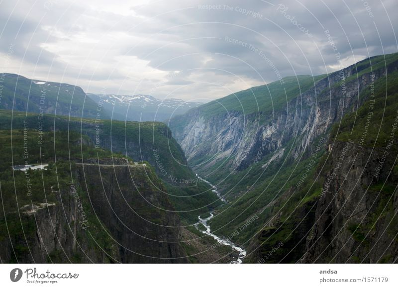 Vøringsfossen Vacation & Travel Tourism Trip Adventure Far-off places Freedom Mountain Hiking Norway Landscape Bad weather Grass Bushes Moss Foliage plant Hill