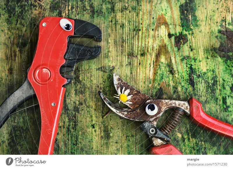 I love you! Work and employment Craftsperson Gardening Workplace Construction site Services Craft (trade) To talk Flower Blossom Animal 2 Love Green Red