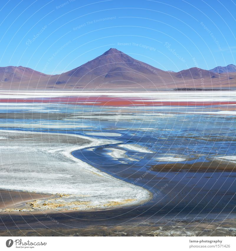 Laguna Colorada Vacation & Travel Trip Freedom Nature Landscape Water Mountain Volcano Lake Lagoon Salar de Uyuni potosi Bolivia South America Multicoloured