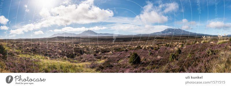 Tongariro National Park (Ngauruhoe and Ruapehu) Hiking Nature Landscape Plant Earth Air Sky Clouds Horizon Summer Beautiful weather Tree Flower Grass Bushes
