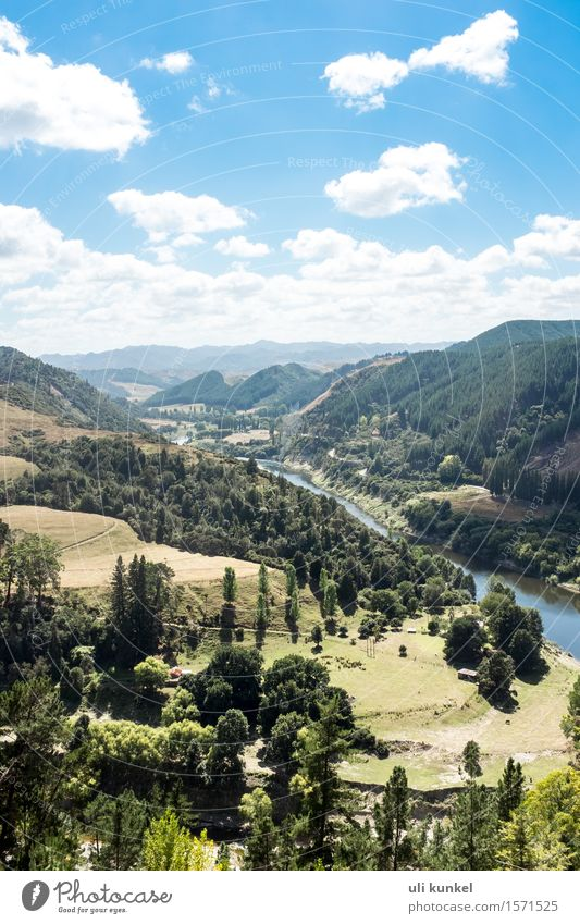 Whanganui River Road Vacation & Travel Tourism Trip Adventure Far-off places Freedom Summer Mountain Hiking Nature Landscape Plant Air Water Sky Clouds Tree