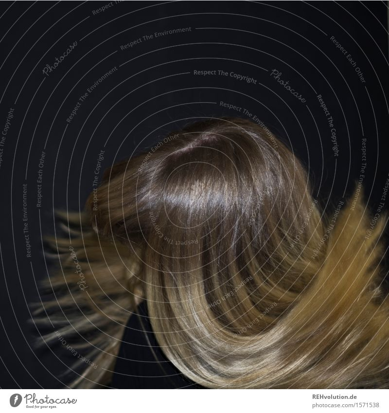 Carina . shake your hair Human being Feminine Young woman Youth (Young adults) Woman Adults Hair and hairstyles 1 18 - 30 years Blonde Long-haired Movement