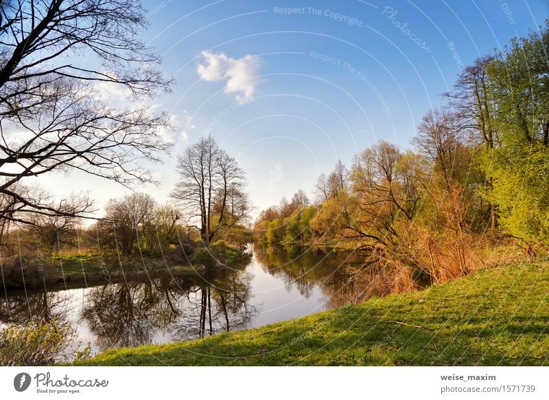 Sunny spring landscape. River in a green forest Sky Nature Vacation & Travel Plant Blue Green Colour Tree Landscape Forest Environment Spring Grass Lake