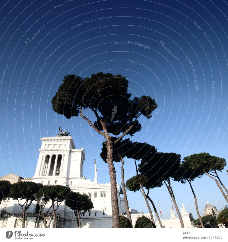 Blueing up the sky over Rome II. Sky Beautiful weather Italy Town Capital city Downtown Old town Palace Places Piazza Venezia Tourist Attraction Landmark