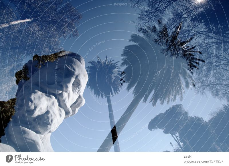 I see you, maybe Man Grandfather Head Facial hair 1 Human being 60 years and older Senior citizen Sculpture Sky Sun Beautiful weather Plant Palm tree Rome Italy