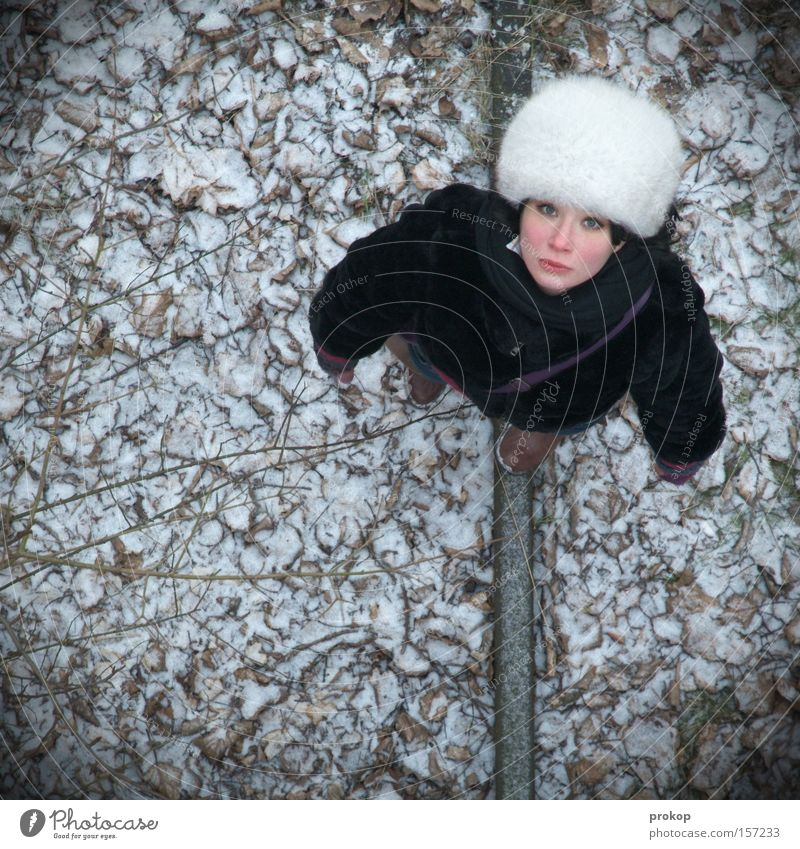 Overview Woman Fur hat Winter Snow Leaf Nature Portrait photograph Above Bird's-eye view Small Loneliness Helpless Going Lost Grief Distress