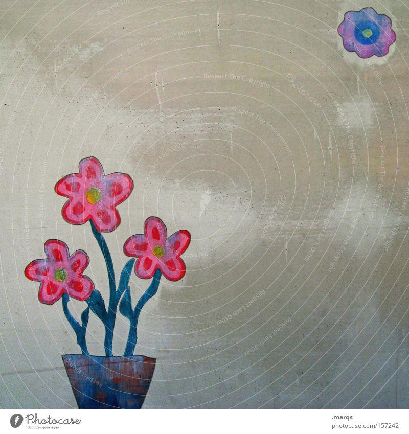 Floret Colour photo Multicoloured Exterior shot Copy Space right Pot Lifestyle Leisure and hobbies Decoration Mother's Day Plant Flower Blossom Exotic Metal