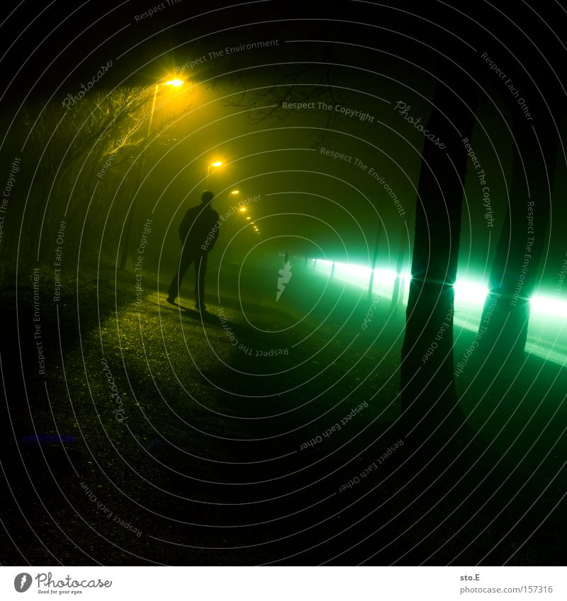 Human being Dark Autumn Lanes & trails Moody Fog Night Light Lantern Mystic Avenue Floodlight Eerie Car headlights Car lights