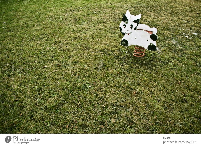 cat cow Joy Leisure and hobbies Playing Infancy Grass Meadow Playground Cat Cow Metal coil Loneliness Lawn Seesaw Empty Childless Memory Colour photo