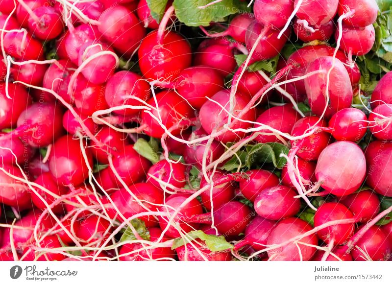 Background with fresh red radish Vegetable Vegetarian diet Leaf Fresh Pink Red food healthy Raw Organic Colour photo