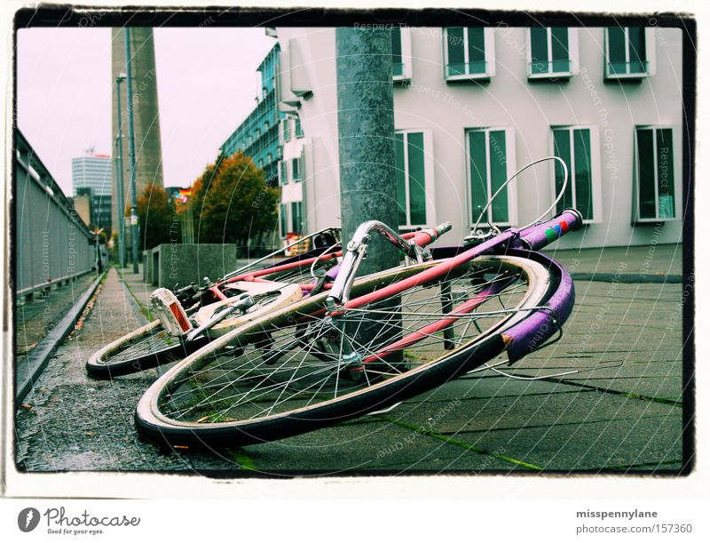 dashes of colour Bicycle Duesseldorf Rhine Pink Violet Wheel Sea promenade Concrete Traffic infrastructure media park