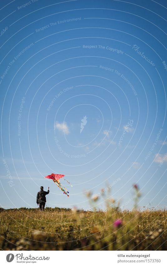 flying hour Leisure and hobbies Masculine Life 1 Human being Nature Autumn Meadow Movement To hold on Flying Infinity Blue Adventure Loneliness Relaxation