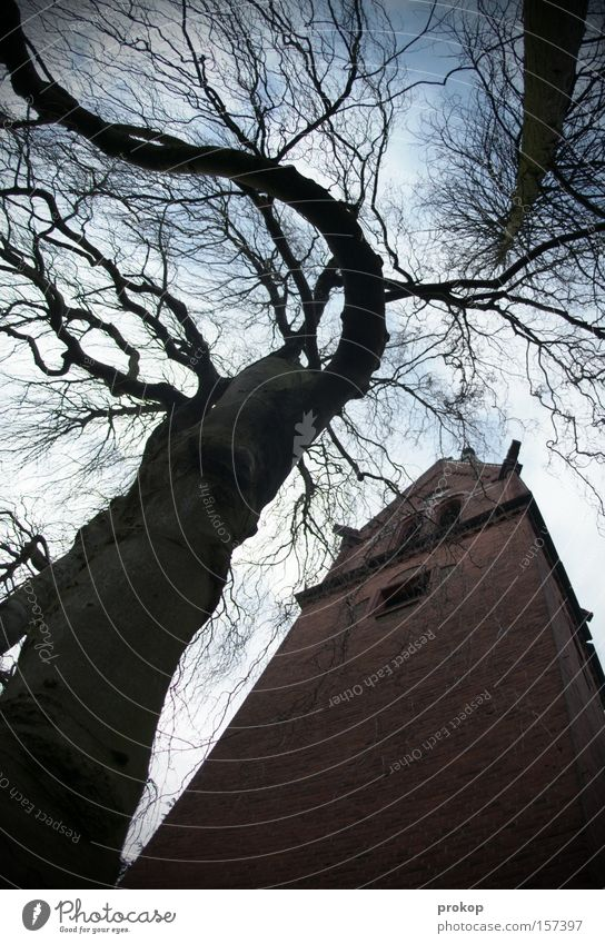 Dongding in the tower Religion and faith Church Tree Tower Church spire Holy Wide angle God Threat Nature Crazy Fantastic Wacky Distorted Bell Sky Clouds