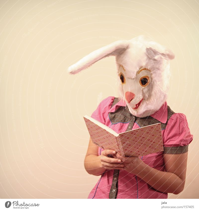 Smart Bunny Hare & Rabbit & Bunny Easter Bunny Carnival Dress up Animal White Funny Pink Human being Ear Carnival costume Costume Reading Book Mammal Mask