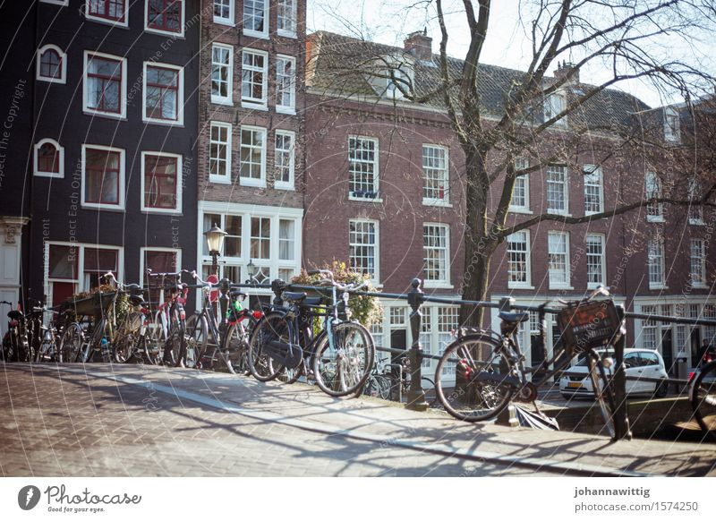 Vacation & Travel Youth (Young adults) City Summer Relaxation Joy Warmth Wall (building) Freedom Facade Tourism Bright Contentment Bicycle Trip Esthetic