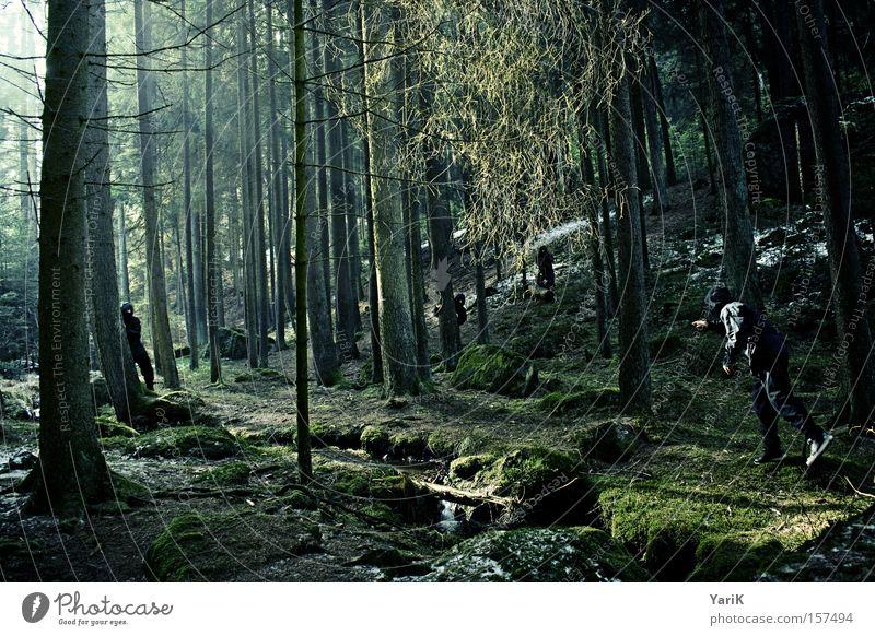 assassins Ninja Fighter Assassin Ambush Hide Forest Tree Sunbeam Observe Brook Green Winter Mysterious Dangerous spy upon sb.
