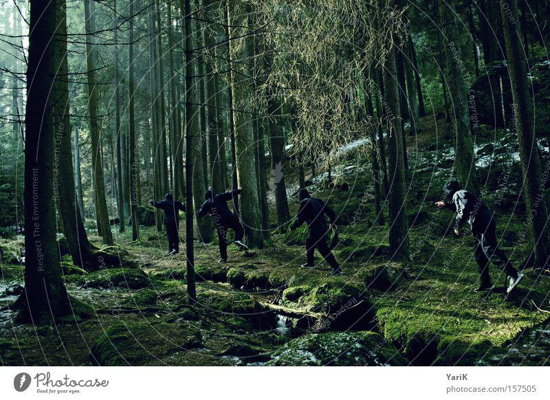 ninja walk Ninja Fighter Assassin Ambush Hide Forest Tree Sunbeam Observe Brook Green Winter Mysterious Dangerous spy upon sb.