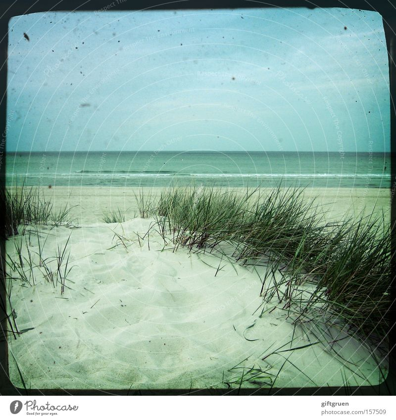 vintage sea Baltic Sea Prerow Darss Beach Sand Ocean Water Far-off places Sky Horizon Blue Vacation & Travel Coast Beautiful Beach dune ttv