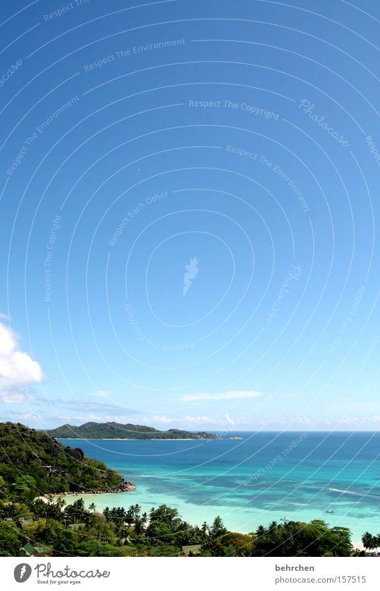 Beautiful Sky Ocean Blue Beach Clouds Far-off places Freedom Coast Vantage point Palm tree Wanderlust Gorgeous Africa Seychelles Praslin