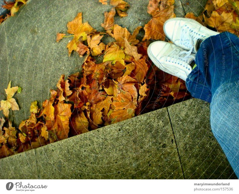 White Leaf Autumn Happy Think Warmth Footwear Brown Jeans Cozy
