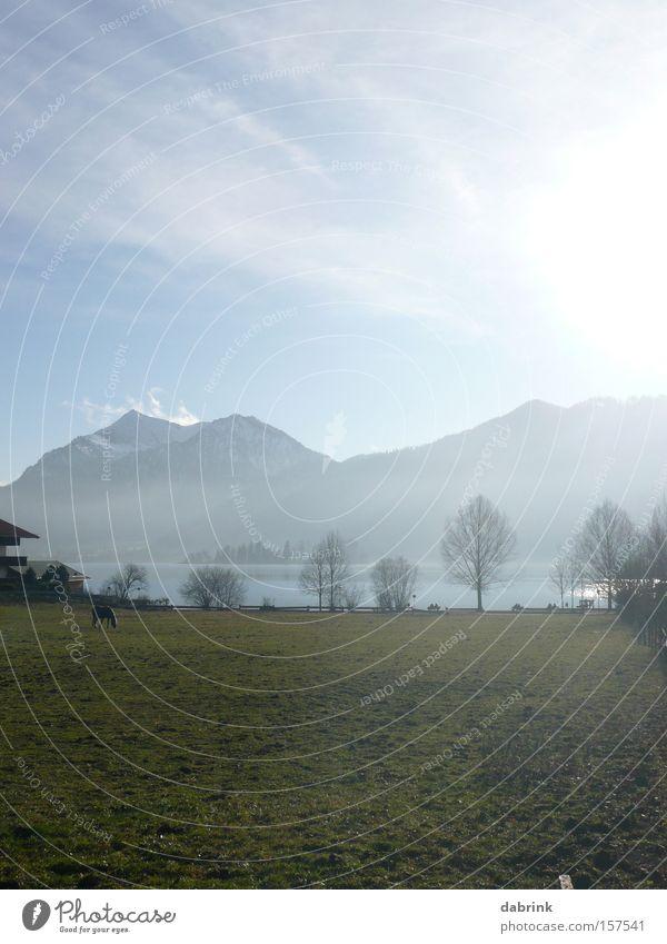 Schliersee1 Alps Lake Winter Mountain Pasture Back-light Bavaria mountain panorama
