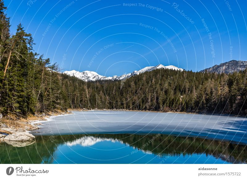 Sky Water Landscape Calm Forest Mountain Emotions Spring Lake Moody Contentment Beautiful weather Lakeside Alps Serene Cloudless sky