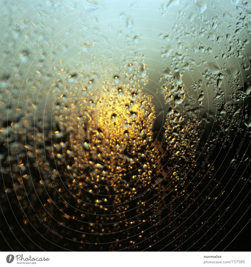 Wet morning Morning Dew Window pane Slice Drops of water Sun Arise Dawn East Wake up Celestial bodies and the universe Sky Derelict early risers day's start