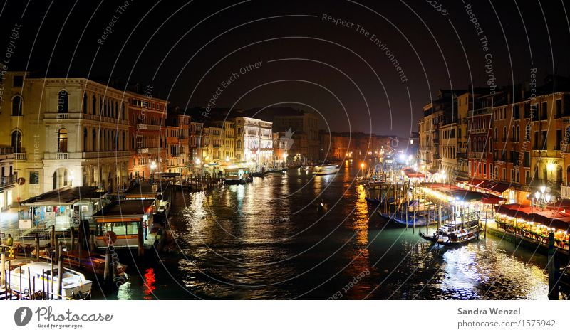 Venice by night... Night life Climate change Town Port City Downtown Old town Pedestrian precinct House (Residential Structure) Manmade structures Building