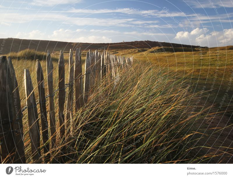 late summer Environment Nature Landscape Sky Clouds Summer Beautiful weather Grass Mountain Coast Fence Emotions Moody Contentment Joie de vivre (Vitality)