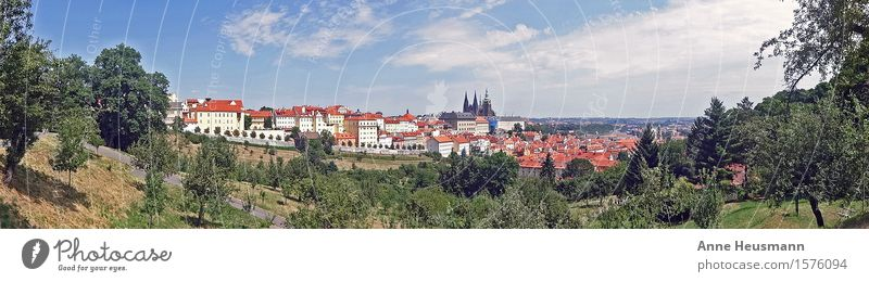 Prague Vacation & Travel Sightseeing City trip Summer Nature Landscape Sky Sun Beautiful weather Foliage plant Park Hill Town House (Residential Structure)