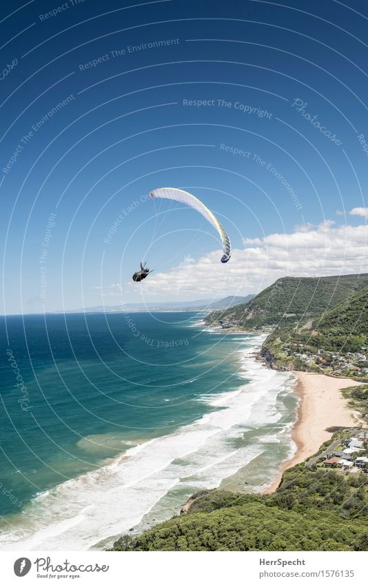 Stanwell Park with paraglider Sports Sportsperson Funsport Extreme sports Paraglider Paragliding 1 Human being 30 - 45 years Adults Nature Landscape Sky Clouds
