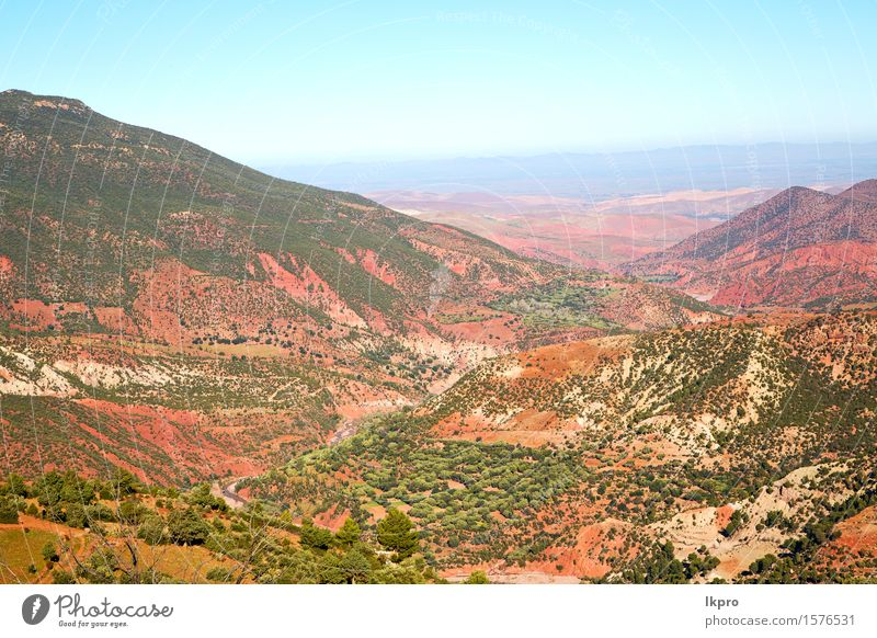 africa ground tree and nobody Tourism Summer Mountain Nature Landscape Plant Sand Sky Climate Tree Hill Rock Oasis Building Stone Red Colour dades Valley arid