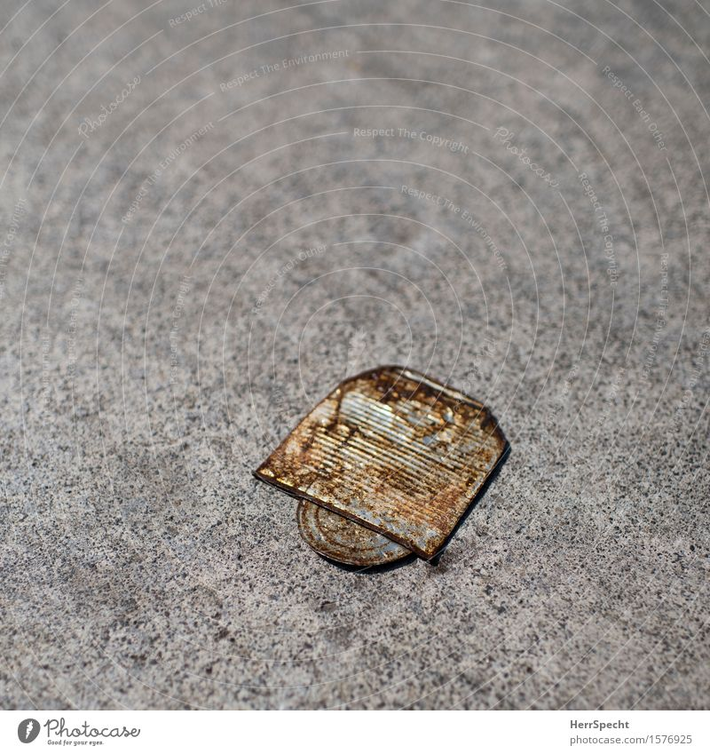 I'm flattened. Metal Old Gloomy Brown Gray Tin of food Empty Level Rust Discovery Pavement Sidewalk Object photography Colour photo Subdued colour Exterior shot