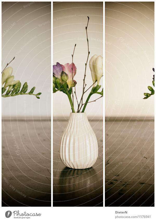 3x1 Plant Flower Leaf Blossom Brown Green White Bouquet Flower vase Wood Vase Colour photo Subdued colour Interior shot Studio shot Detail Deserted