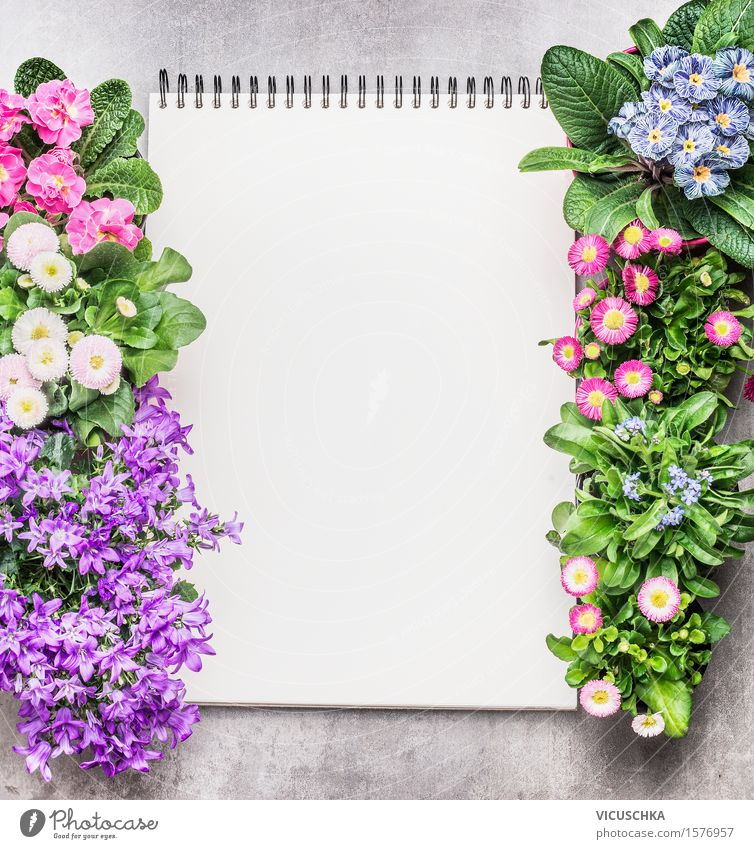 Notepad with garden flowers in pots on stone background Style Design Leisure and hobbies Summer Garden Decoration Table Academic studies Study Gardening