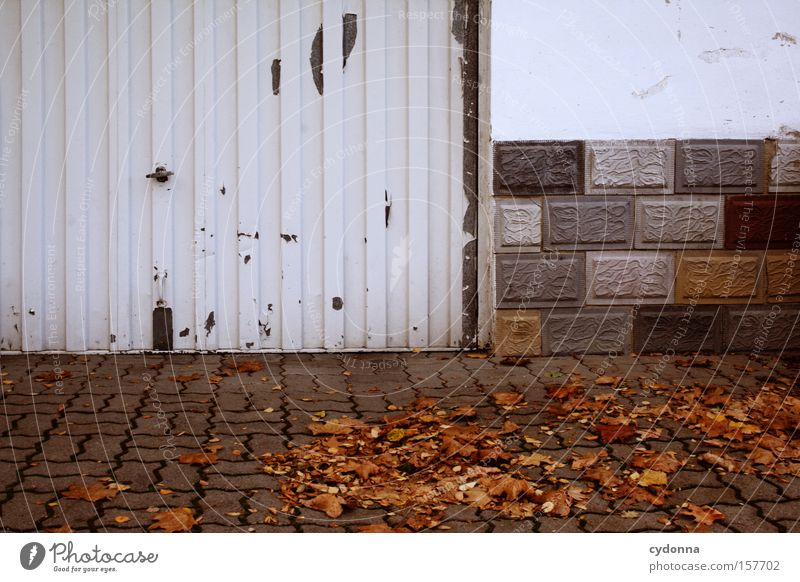 exit Autumn Leaf Multicoloured Garage House (Residential Structure) Sidewalk Wind Gloomy Seasons Wall (barrier) Transience Living or residing Beautiful Esthetic