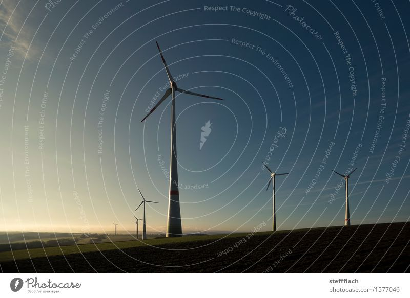 Windy harvest in the morning Energy industry Technology Renewable energy Wind energy plant Environment Landscape Earth Air Sky Sunrise Sunset Spring Climate