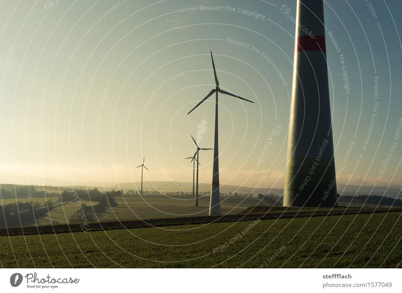 Sunrise wind harvest Energy industry Technology Renewable energy Wind energy plant Environment Landscape Earth Air Sky Sunlight Spring Climate Weather