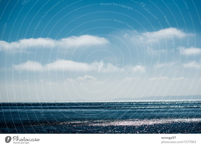 glittering sea Nature Landscape Air Water Sky Clouds Horizon Spring Beautiful weather Waves Coast Baltic Sea Maritime Blue White Longing Wanderlust Relaxation