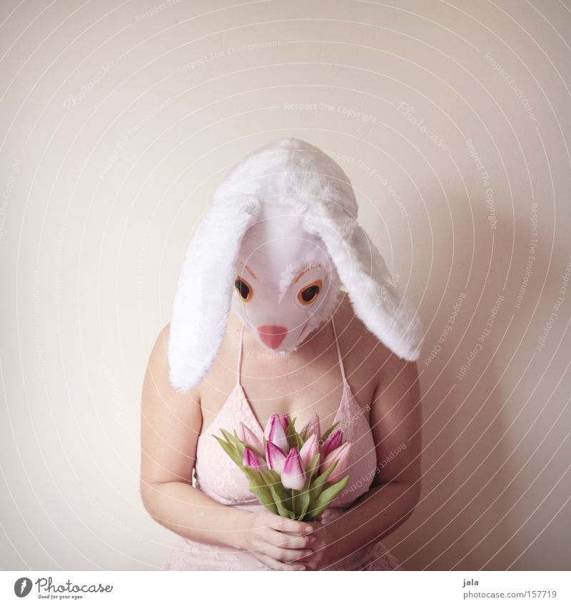 Woman White Flower Joy Love Animal Funny Easter Ear Carnival Hare & Rabbit & Bunny Carnival costume Costume Easter Bunny Dress up Apology