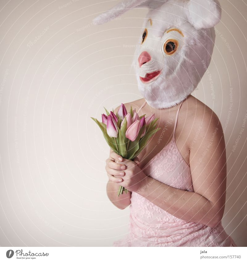 Woman White Flower Joy Love Animal Funny Easter Ear Mask Carnival Hare & Rabbit & Bunny Costume Easter Bunny Dress up Human being