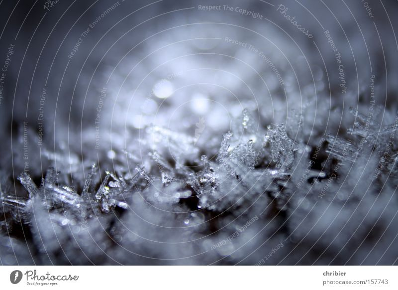 Winter Cold Snow Ice Frost Frozen Freeze Minerals Crystal Hoar frost Ice crystal