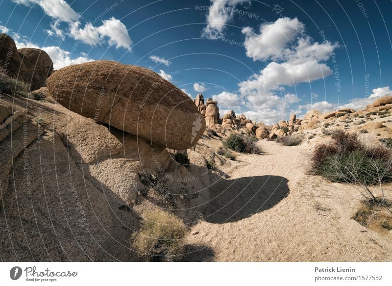 Desert Solitaire Beautiful Wellness Life Harmonious Well-being Vacation & Travel Adventure Expedition Summer Mountain Environment Nature Landscape Sky Clouds