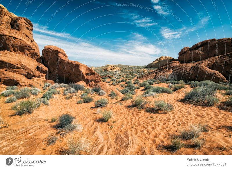 Desert View Sky Nature Vacation & Travel Plant Blue Beautiful Summer Landscape Red Clouds Far-off places Mountain Environment Freedom Rock Horizon