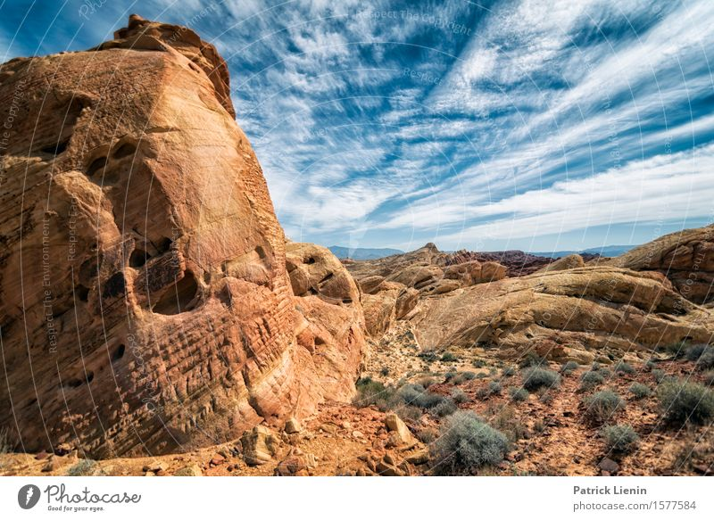 Valley of the Fire Sky Nature Vacation & Travel Blue Summer Beautiful Landscape Red Clouds Calm Far-off places Mountain Environment Warmth Life Rock