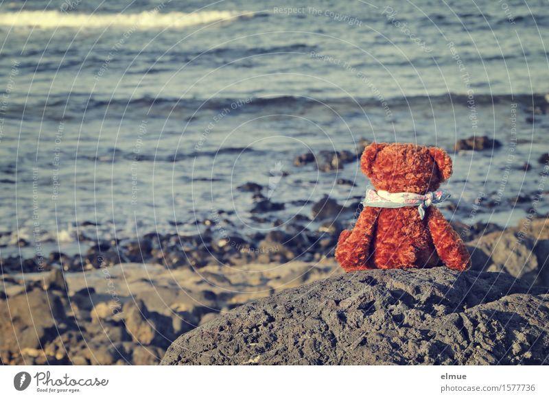 Teddy Per on holiday (14) Vacation & Travel Summer vacation Sunbathing Waves Coast Ocean Teddy bear Cuddly toy Neckerchief Looking Sit Small Joy Happy